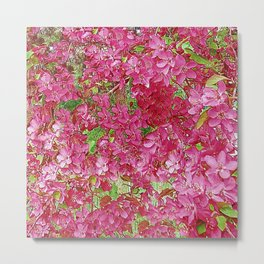 GREEN & FUCHSIA PINK CRABAPPLE FLOWER SPRING ART Metal Print