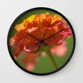Lantana Camara Wall Clock