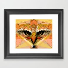 Eagle Eyes Framed Art Print