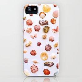 Color Pop! iPhone Case