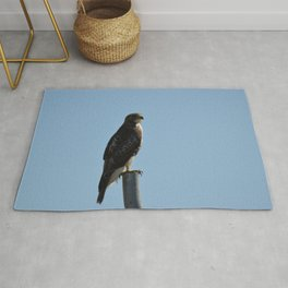 Coopers Hawk On A Post Rug