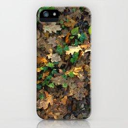Warm Autumn iPhone Case