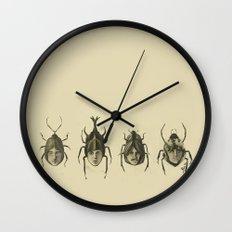 Beetle Morphology Wall Clock