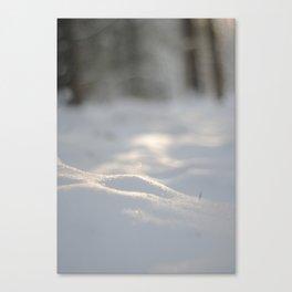Snow crest Canvas Print