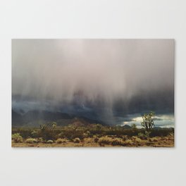 Arizona Storm Canvas Print