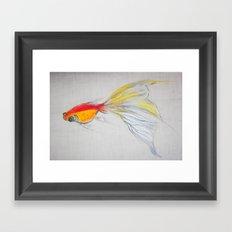 Goldfish Pond (close up#1) Framed Art Print