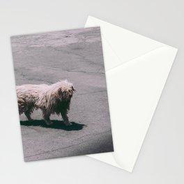 Beautiful Dog Stationery Cards