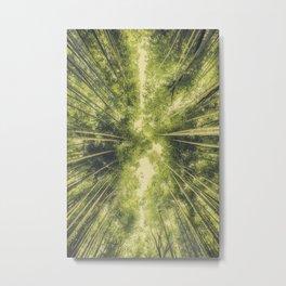 Bamboo Forest III Metal Print