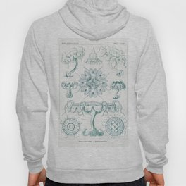 Creatures of the seas by Ernst Haeckel, German art. Hoody