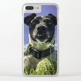 Cute dog at the beach Clear iPhone Case