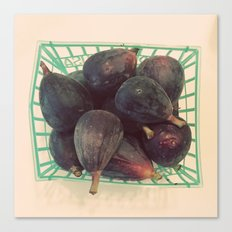 Figs in a Basket Color Photo Canvas Print