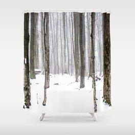 Winter trail Shower Curtain