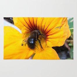 Black bee Rug