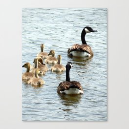 Animals of Nature Canvas Print