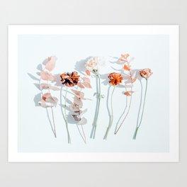 Minima #phoography #floral Art Print
