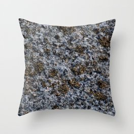 Rock with gold pigment Throw Pillow