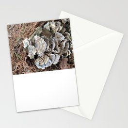 Fungus in muted colors Stationery Cards