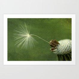 Last Wish Art Print
