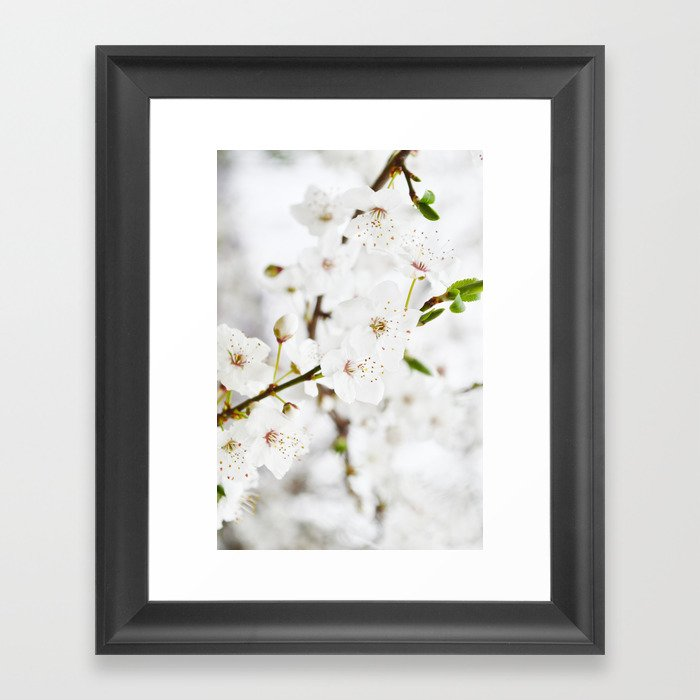 White blooming Framed Art Print