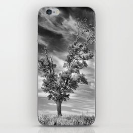Ethereal Skies iPhone Skin