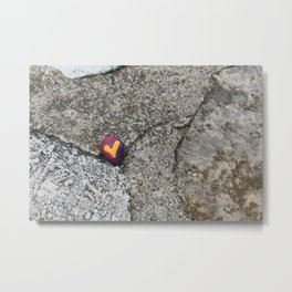 Heart Rock and Fossil Rock Metal Print