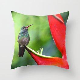 Hummingbird After Rain Throw Pillow