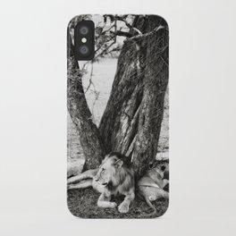 African Safari Lion iPhone Case