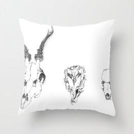 sc Throw Pillow
