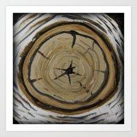 BIRCH Woodland Log Art Print