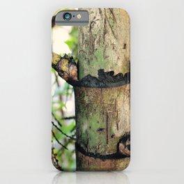 Palm Trunk iPhone Case
