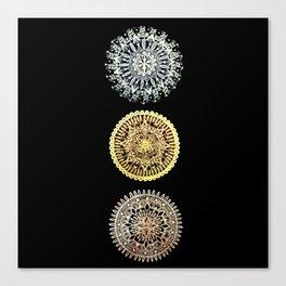 Trio of Metallic Mandalas Canvas Print