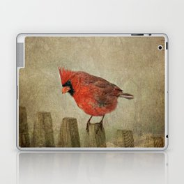 RED bird Laptop & iPad Skin