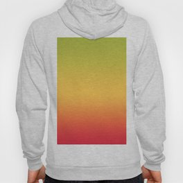 Tropical Colorful Gradient Pattern Hoody