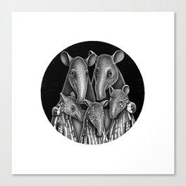 Tapir Family | Illustration Canvas Print