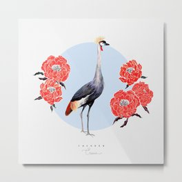Grey Crowned Crane Metal Print