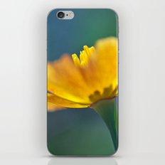 Escholtzia 30 iPhone & iPod Skin