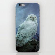 Moonlit Snowy Owl iPhone Skin
