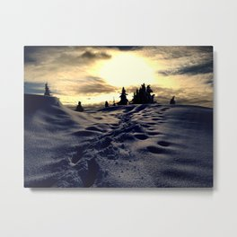 Walk in the Backcountry - Cypress Mtn, BC Metal Print
