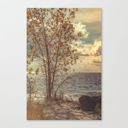 When You Start To Fall Canvas Print