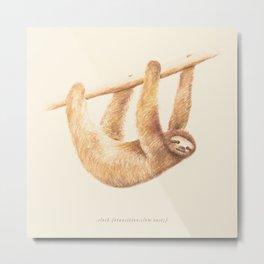 Css Animal: Sloth Metal Print