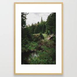 sneak peak Framed Art Print