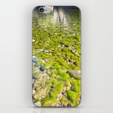River Oh River iPhone & iPod Skin