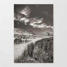 The way to the beach Canvas Print