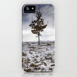 A Tree Stands Alone - Ipswich, MA 2019 iPhone Case
