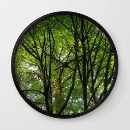 Mossy Trees 28 Wall Clock