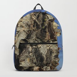 River Birch Bark up against the blues Backpack