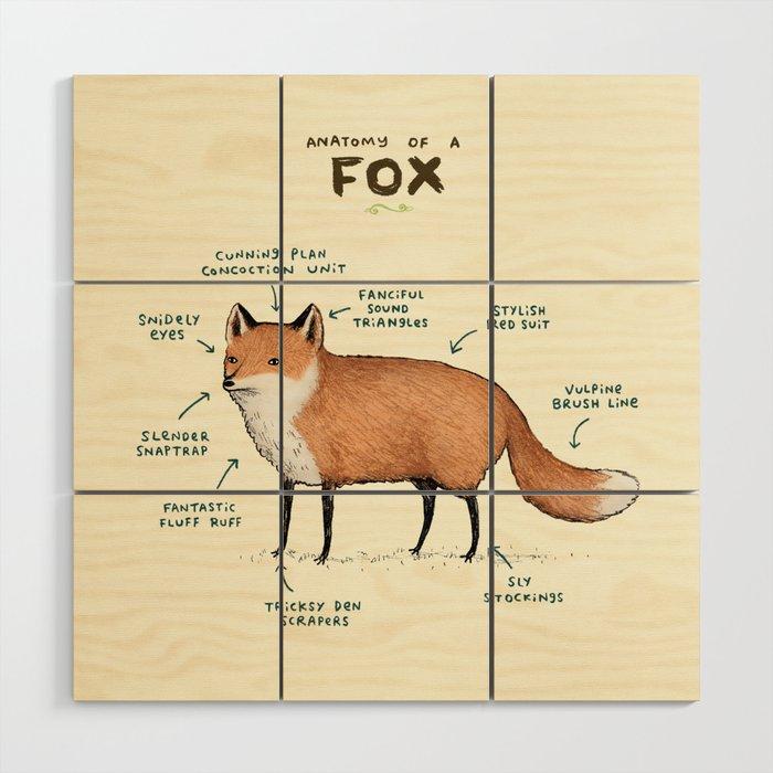 Anatomy Of A Fox Wood Wall Art By Sophiecorrigan Society6