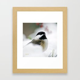 White Winter Chickadee Framed Art Print