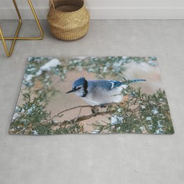 Hunkered Down (American Blue Jay) Rug