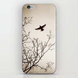 Bird Flying Tree Photography, Brown Nature Branches, Birds Fly Trees iPhone Skin